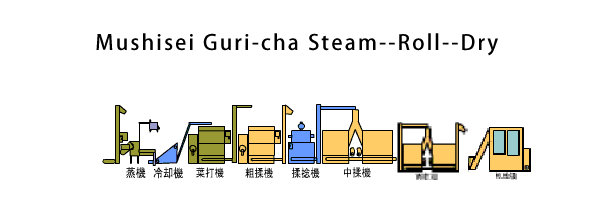 Mushisei Guri-cha Steam--Roll--Form/Shape--Dry